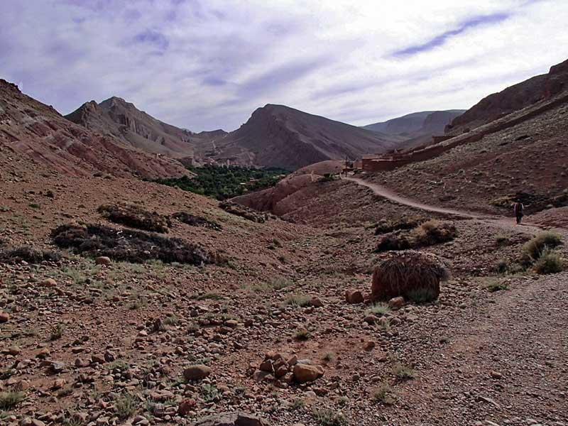 Un chemin de vie dans l'Atlas marocain